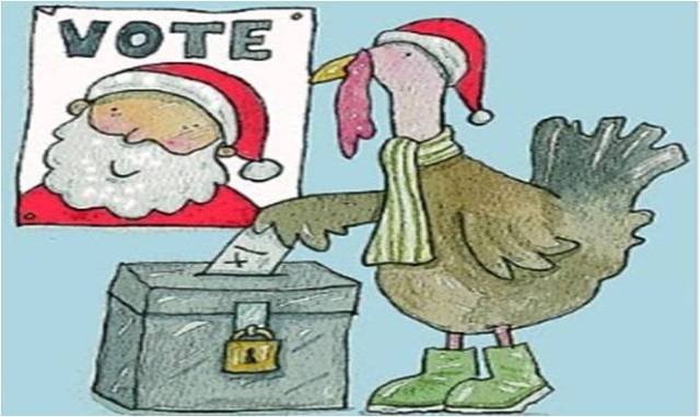 turkeys voting